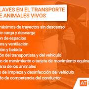 Bienestar y seguridad en el transporte de los animales vivos